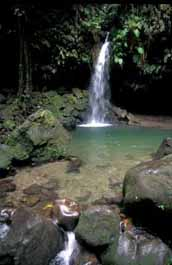 Emerald Pool falls, Dominica