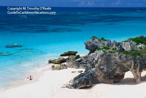 Caribbean Beaches Photo Gallery: Bermuda Pink Sand Beach Photos Pictures